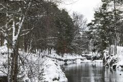 vinter12 hems