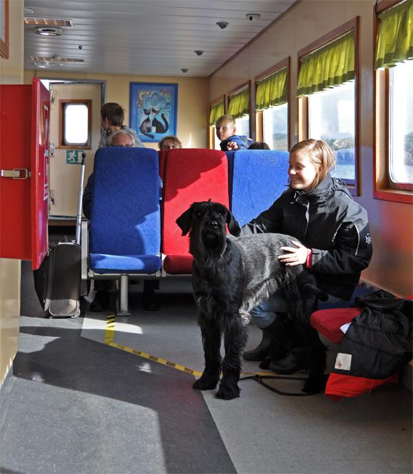 Nina är hundvakt på färjan till Åstol